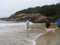 the boys on a sandy beach