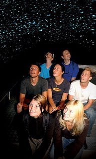tourists on the boats in the glowworm caves, the glowworms appear blue and are hanging on the ceiling