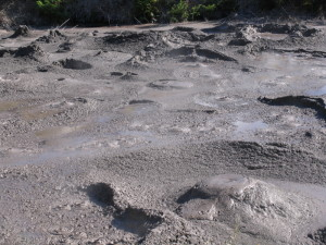 The ground after a geyser eruption